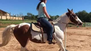Dixie Asbury Horseback Riding Video