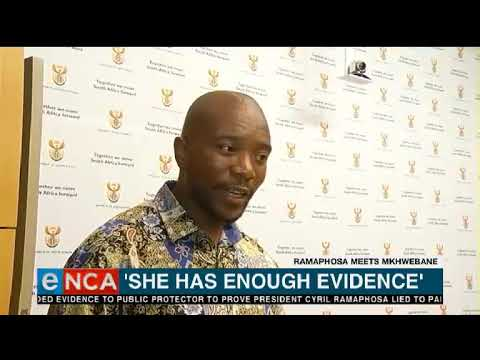 DA leader says PP has enough evidence