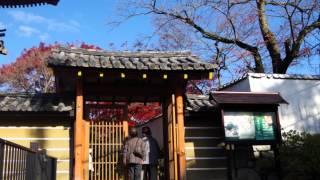 関西観光の動画|京都の紅葉、穴場観光スポット久安寺