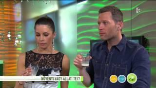 Növényi vagy állati tejet fogyasszunk? - tv2.hu/fem3cafe