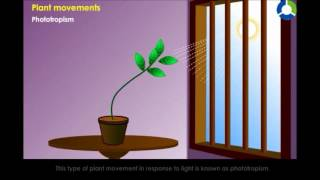CH06-PLANTS – GROWTH AND MOVEMENTS-PART05-MOVEMENTS IN PLANTS01