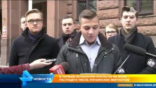 В Польше вспыхнули протесты из за тысяч украинских мигрантов
