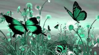 Butterflyz ~ Alicia Keys