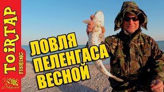 Рыбалка на украине и азовском море в августе