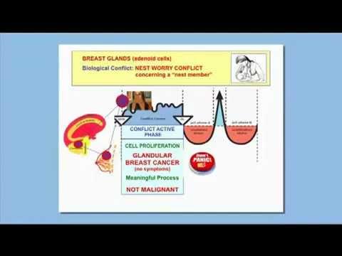 Jak powiększyć piersi w ciągu zaledwie 1-3 miesięcy