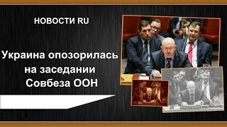 Украина опозорилась на заседании Совбеза ООН
