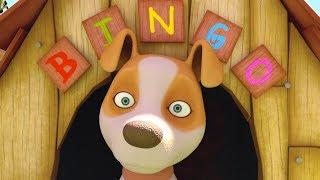 Bingo - Canciones Infantiles   El Reino Infantil