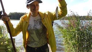 Река уча московская область рыбалка