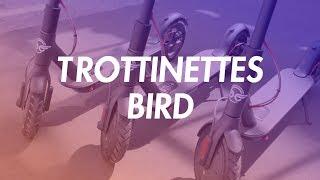 On A Testé Les Nouvelles Trottinettes Bird En Libre-service