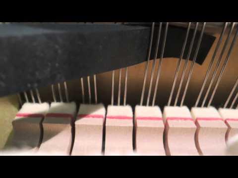 Das Klavier - erste Hife, wenn ein Ton verstimmt ist  (Piano is out of tune - first aid)