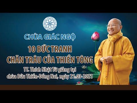 10 bức tranh chăn trâu của Thiền tông