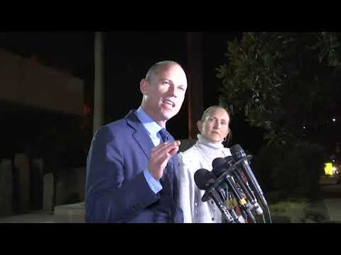 Attorney Michael Avenatti has been released from police custody following his arrest on a felony domestic violence charge in Los Angeles. (Nov. 14)