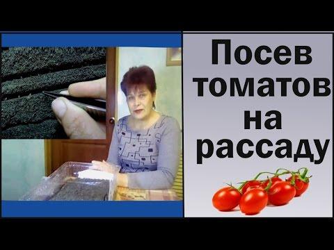 Посев семян томатов на рассаду. Выращивание рассады в домашних условиях.