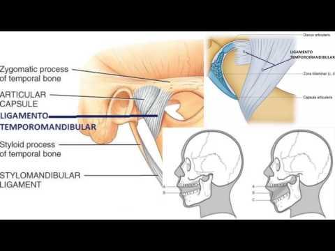 Volgogrado osteocondrosis espinal