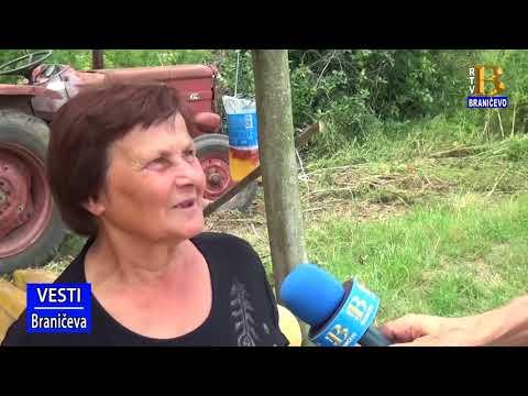 Un bărbat din Timișoara cauta femei din Reșița