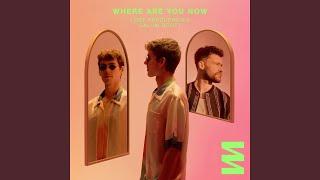 Kadr z teledysku Where Are You Now tekst piosenki Lost Frequencies & Calum Scott