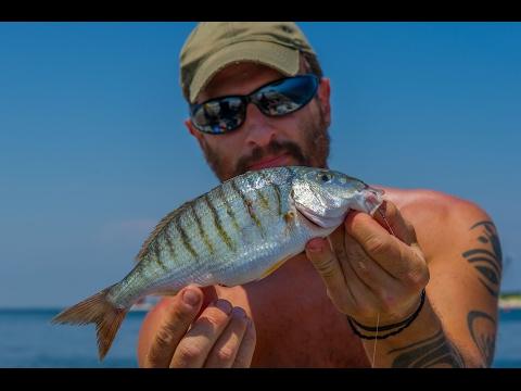 Pesca di un crucian in maggio