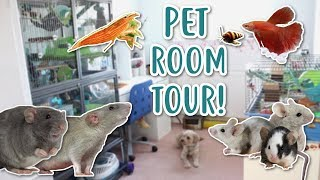 PET ROOM TOUR! 2018