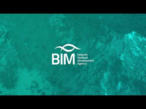 Aquamarine Garden at BLOOM 2019 | BIM