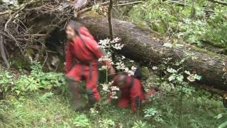 preview picture of video 'Jama ob meji pri Sežani, oktober 2009'