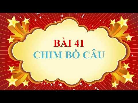 SINH 7- BÀI 41. CHIM BỒ CÂU ( VIDEO CLIP) ( CÔ PHƯƠNG THỦY ĐĂNG)