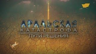 Документальный фильм «Аральская  катастрофа: Пути решения»