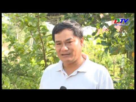 Làng nghề đan đát ấp Mỹ 1, xã Vĩnh Phú Đông