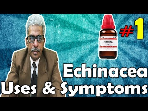 Download Echinacea (Part -1) - Uses and Symptoms in Homeopathy by Dr. P.S. Tiwari HD Video