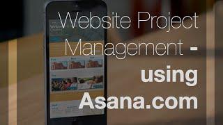 Asana.com Introduction