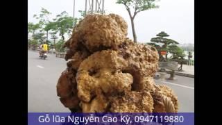 Gỗ lũa Nguyễn Cao Kỳ, 0947119880