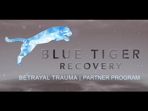 Betrayal Trauma Partner Program