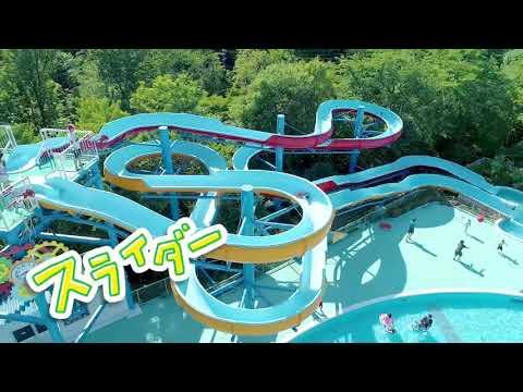 【水の楽園 モンプル】日本モンキーパーク