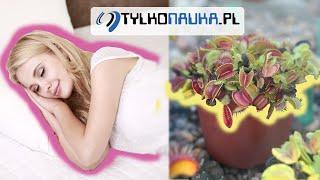 Komunikacja z roślinami i osobami podczas świadomego snu będzie możliwa.