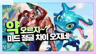 킨코우 길잡이 피즈-리신덱