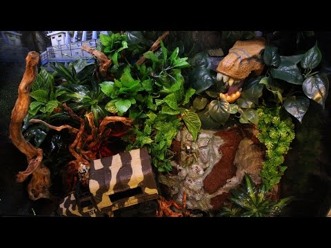 AMAZING Jurassic-themed Terrarium! (Video)
