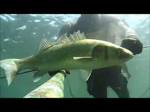 La pesca da una diga su una filatura