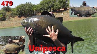 Pescaria de superfície com os Tambacus Gigantes do Unipesca - Fishingtur na TV 479