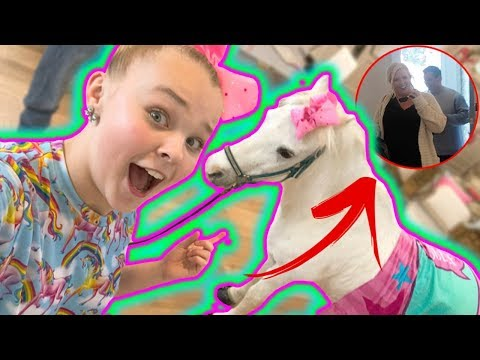 SURPRISING MY FAMILY WITH A HORSE!!