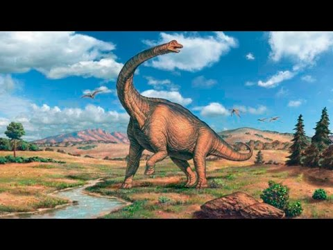 Dinosaurs Documentary Discovery Channel Living Dinosaur National Geographic Animals