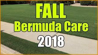 Fall Bermuda Grass Care and Fertilizer