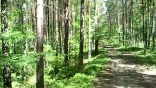 preview picture of video 'Somewhere in northern Poland near to Szemud'