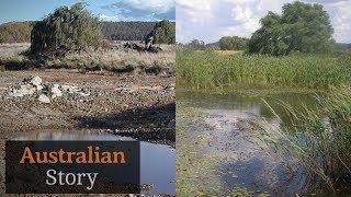 How Peter Andrews rejuvenates drought-struck land   Australian Story
