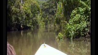 preview picture of video 'Rio Canimár, Matanzas, Cuba'