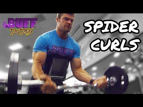 EZ Bar Spider Curl