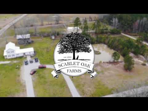 Scarlet Oak Farms Inc