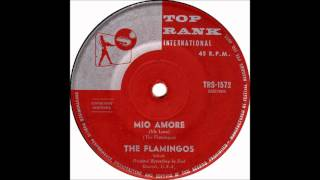 Mio Amore 'Til The End Of Time   The Flamingos  1960 End 45 1073