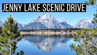 🚗 Jenny Lake Scenic Drive | Grand Teton National Park | Grand Teton Scenic Drive