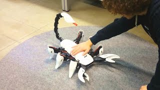 "(Video) ""Scorpion hexapod robot with a tail that stings"""