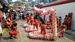 Singapore Dragon And Lion Dance Festival 2019 (Pagoda Street): S.D.& L.A.A