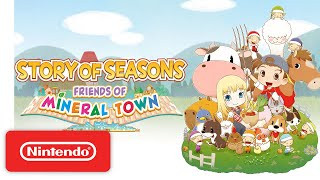 Picture of a game: Story Of Seasons: Friends Of Mineral Town
